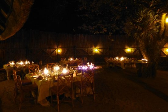 Motswari Private Game Reserve:                   Diner en plein air!