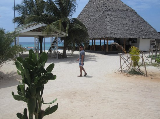 Jambo Brothers Bungalows:                   big roof area is breakfast place also they serve lunch and dinner