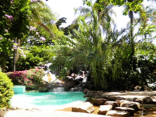 Safari Park Hotel: Garden area