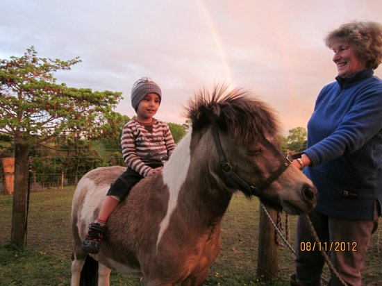 Waitomo Big Bird Bed & Breakfast: Mini-pony ride amidst a double rainbow!