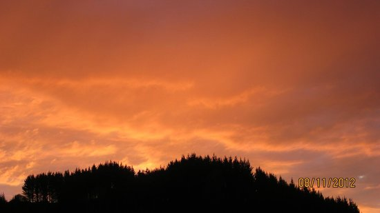 Waitomo Big Bird Bed & Breakfast: Lovely sunset captured from Big Bird