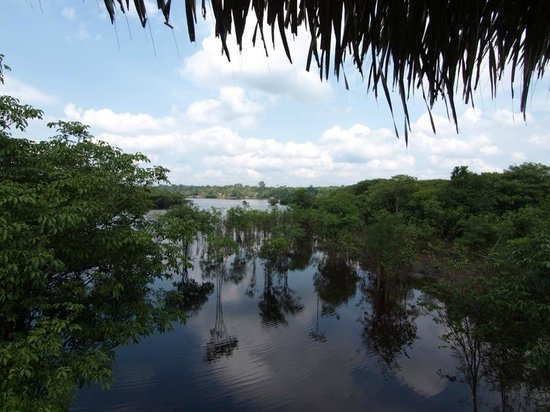 Tariri Amazon Lodge:                   Blick vom Hängemattenbereich