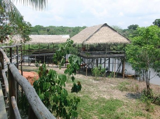 Tariri Amazon Lodge:                   Lodge