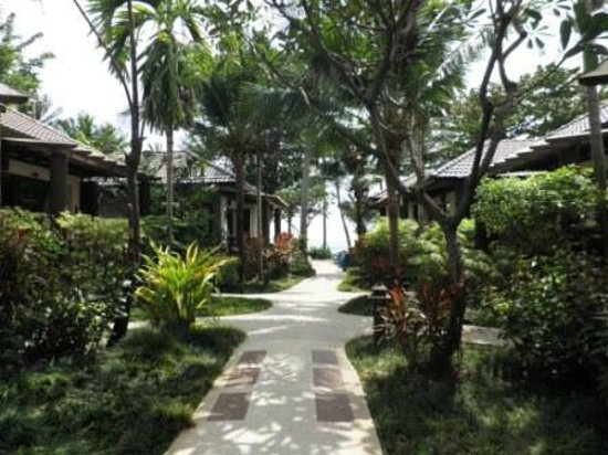 Baan Chaweng Beach Resort & Spa:                   Jardins et accès à la plage