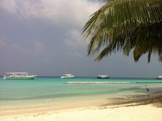 كوراماتي آيلاند ريزورت:                   maldive 2013                 