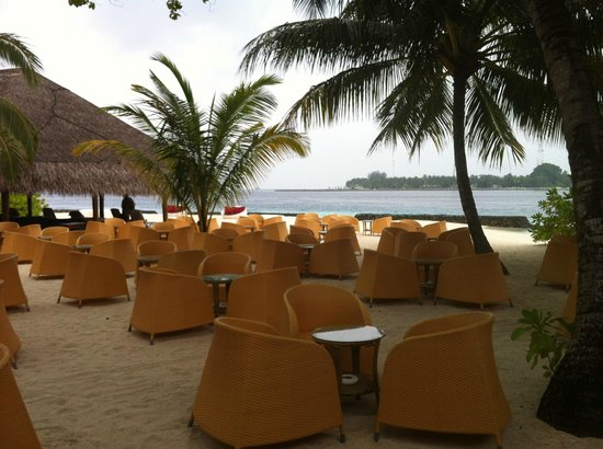 Kuramathi Island Resort:                   maldive 2013