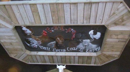 Calf Sanctuary Cafe:                   Ceiling