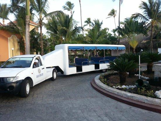 Grand Bahia Principe Punta Cana:                                     Автобус