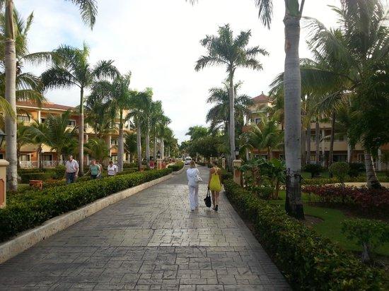 Grand Bahia Principe Punta Cana:                                     дорога на пляж