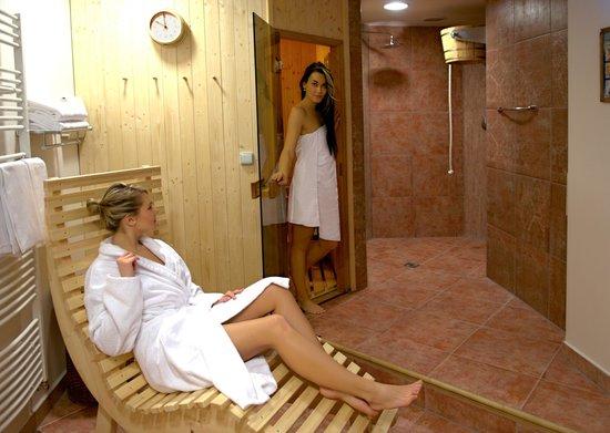 Hotel Concertino Zlata Husa: Sauna Orea Hotel Concertino