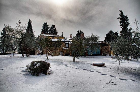 Agriturismo Montalbino - Under the snow