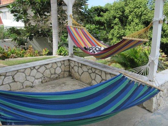 The Bird's Nest:                   hammocks