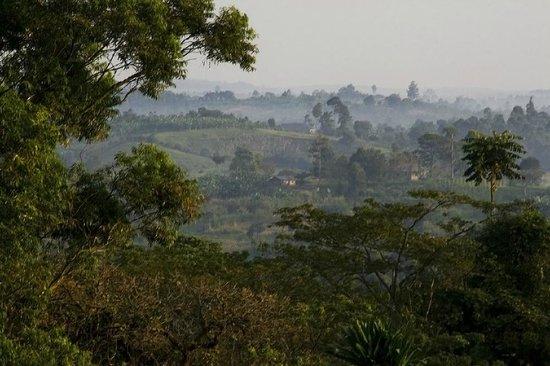 Enfuzi Community Campsite: Morning view