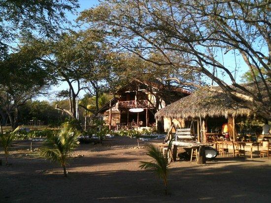 Surf Ranch Hotel & Resort:                   hermosa beach facilities