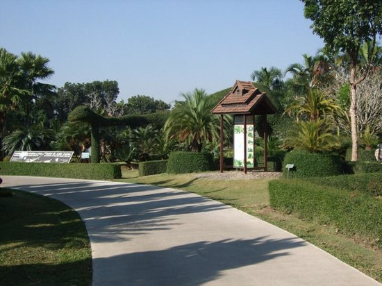 Horizon Village & Resort: Botanical garden pathway