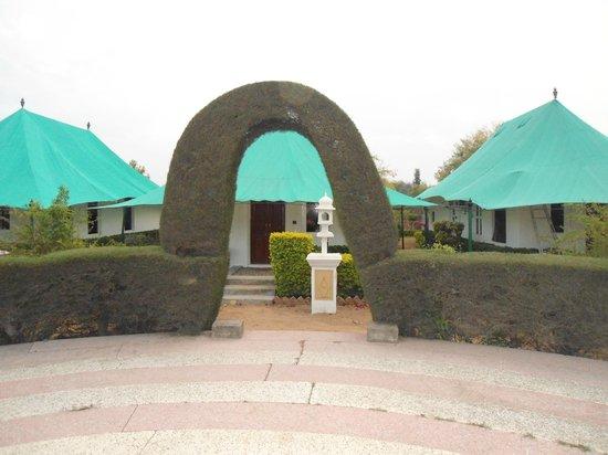 Balaram Palace Resort:                                     The Royal Tents
