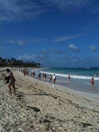 Tropical Princess Beach Resort & Spa:                   la plage