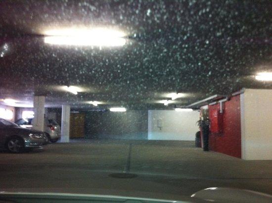 Hotel Allegra:                                     Garage
