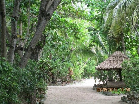 Navini Island Resort: Walking to the dining room from our bure