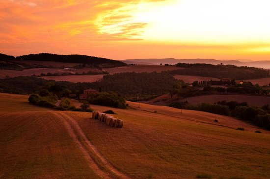 Sant' Antonio: Our farm land
