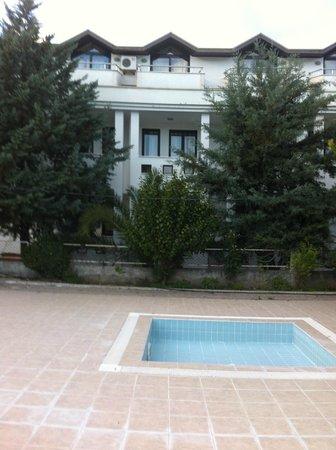 Minta Apart Hotel :                   красивые деревья