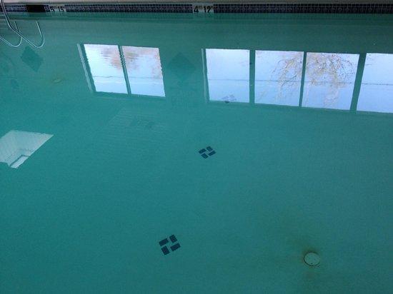 Quality Inn & Suites in Gettysburg:                                                                         Dirt on floor of pool