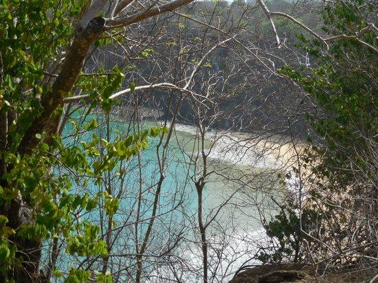 Baia do Sancho:                   Vista da praia pela trilha