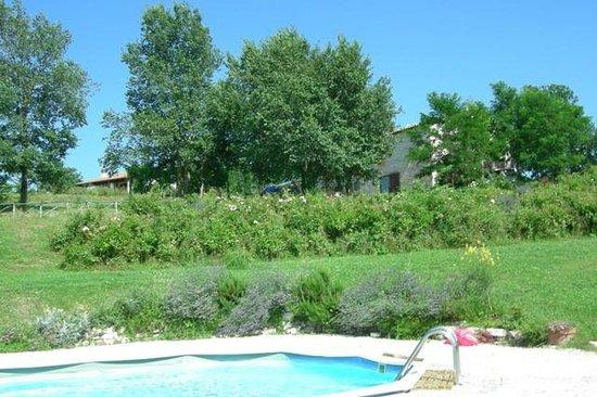 La Maestade:                   pool