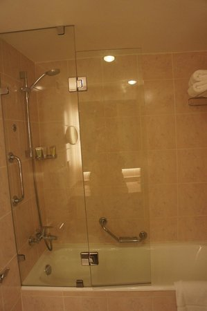 Movenpick Resort Petra:                   bath/shower