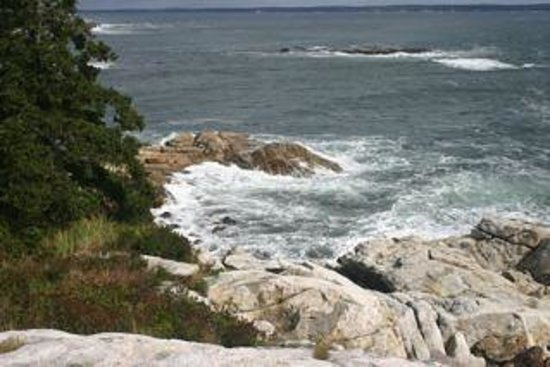 Reid State Park:                   Part of the rocky coastline area