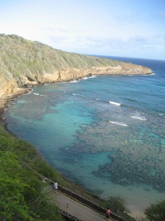 Discover Hawaii Tours:                   Hanauma Bay