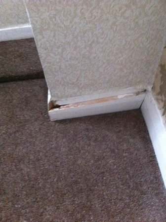 Wessex Hotel:                   skirting board