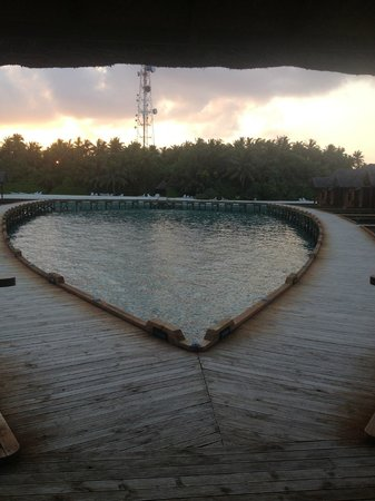 Fihalhohi Island Resort:                   Island