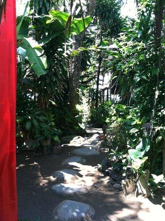 Lumbung Damuh:                   walking path between huts                 