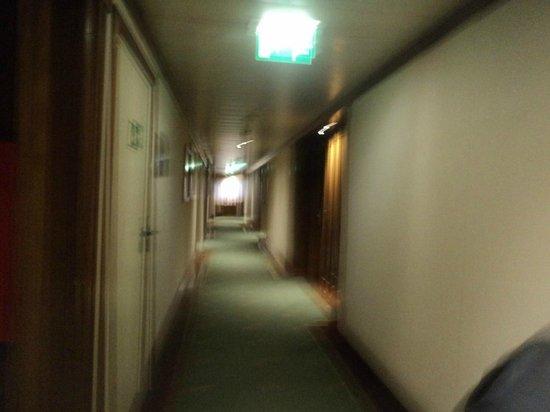 Hotel Real Parque:                   corredor