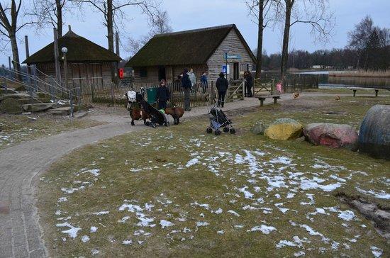 Center Parcs De Huttenheugte:                   Kleiner Kinderbauernhof