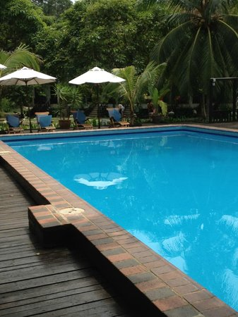 Coral Redang Island Resort:                   pool