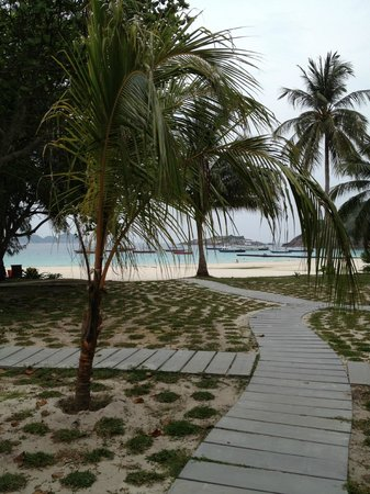 Coral Redang Island Resort:                   beach with dining on left and bar on right