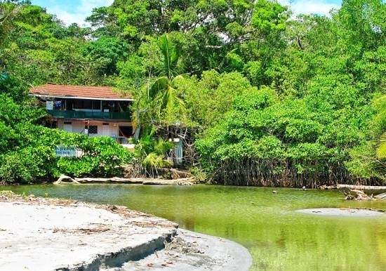 Nature's Beachfront Aparthotel: the view to the housee from the beach.