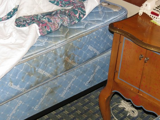 Days Inn Lafayette/Airport:                   Stained mattress, time to replace.