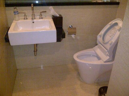 Aston Samarinda Hotel and Convention Center:                   Great place to put a toilet.....under the sink!