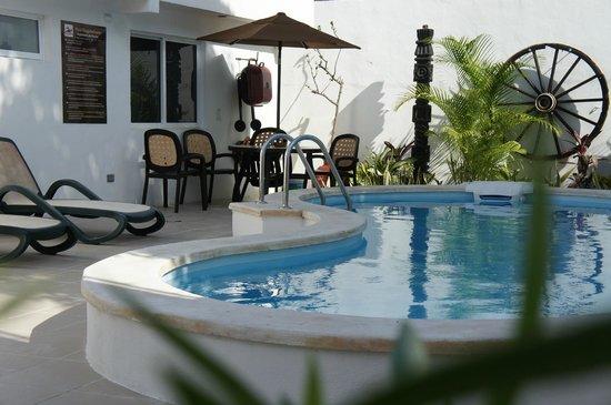 Moloch Hostel y Suites: Terraza con alberca