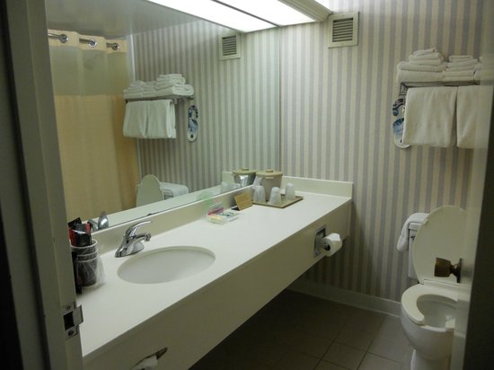 Holiday Inn Washington - Georgetown:                   Baño de habitacion, tiene cafetera