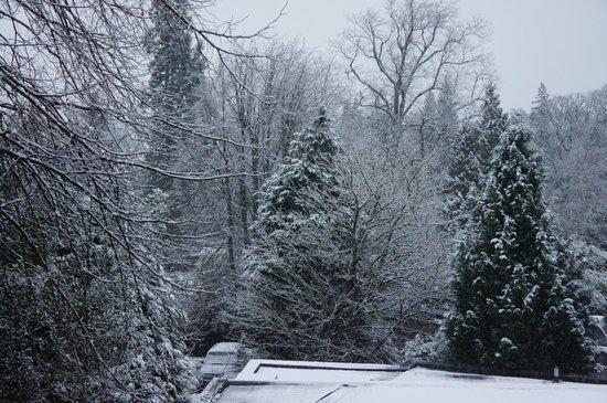 BEST WESTERN Park Hotel:                   More snow!