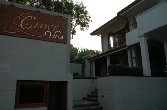Clove Villa:                   In front of the hotel