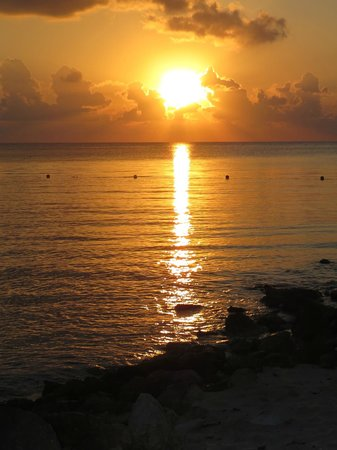 Secrets Aura Cozumel :                                     Sunset