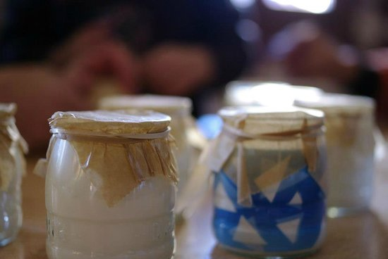 Borda El Vilar: yogures caseros