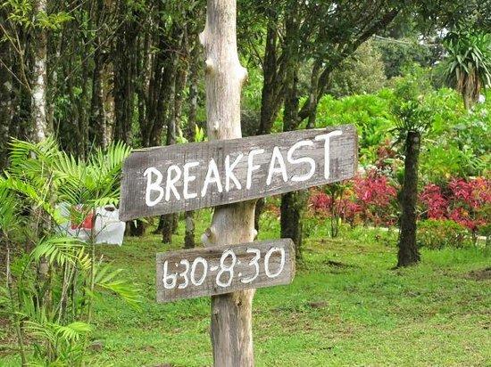 Hotel El Bosque:                   To go the breakfast area