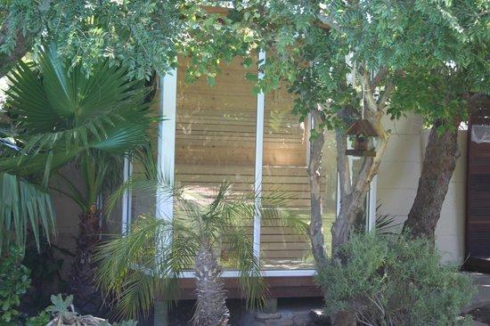 KhashaMongo Guesthouse:                   finnische Sauna im tropischen Garten