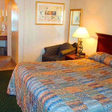 Torch Lite Inn: Guest Room